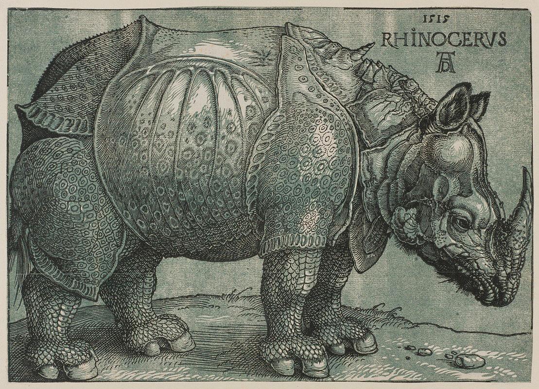 Albrecht Dürer Rhinozeros